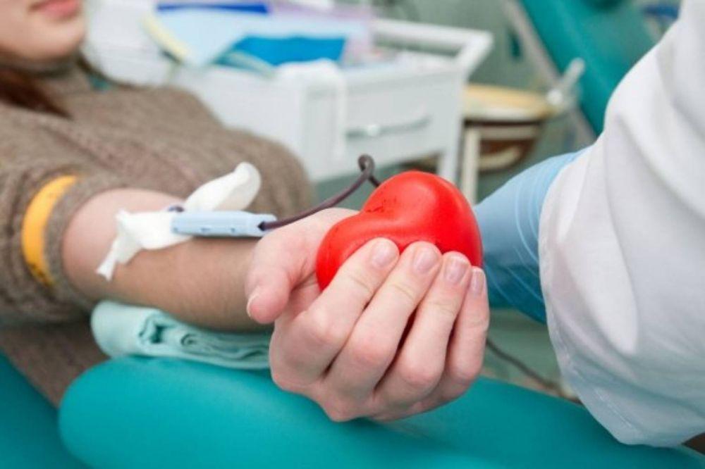 Где сдавать кровь