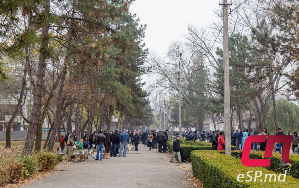 Выставка ярмарка голубей, г.Бельцы, Молдова, 11.11.2018г.
