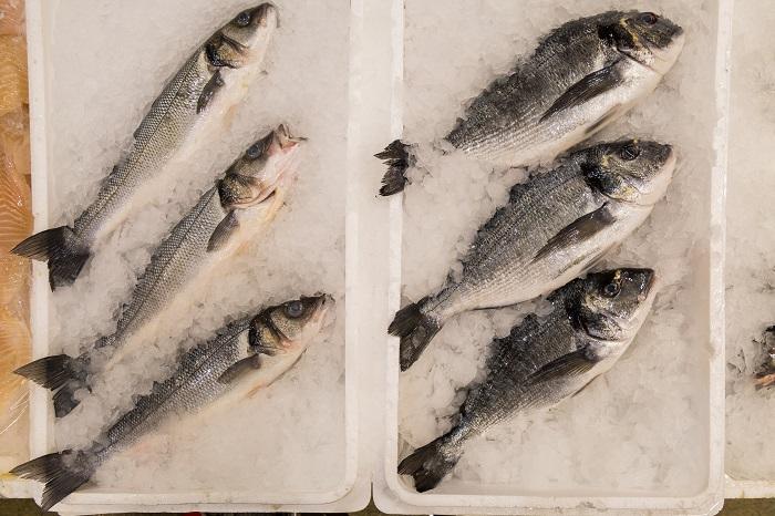 Рыба в Метро