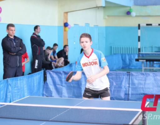 Настольный теннис, Бельцы, Молдова