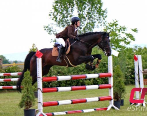 Скачки, конный спорт в Бельцах, День города