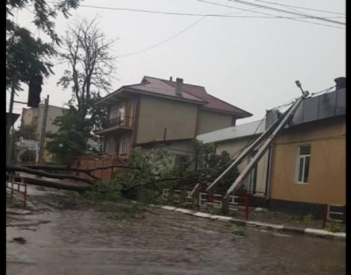 Стихия в Бельцах  поваленные деревья и столбы, улицы без электричества 39dad3847d0