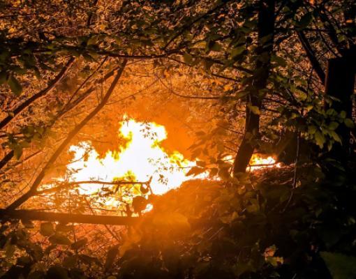 Пожар в Парке Победы в Бельцах