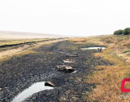 Пересохшее русло Реута на границе Дрокиевского и Рышканского районов