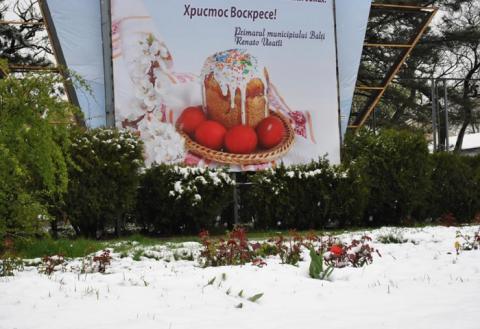 Бельчане делятся в соцсетях фотографиями апрельского снега 65460d390f8