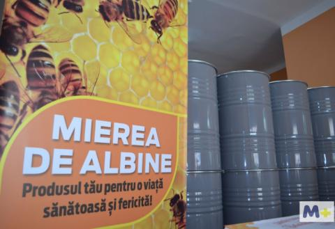 Мёд, пчёлы