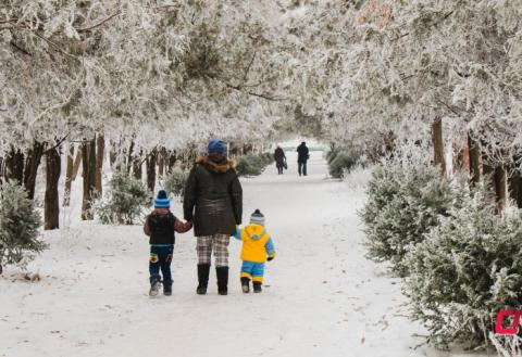 Бельцы зимой