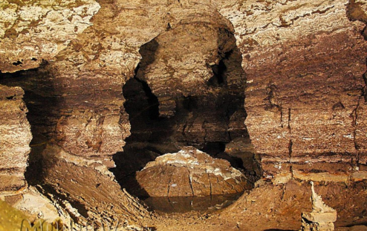 Пещера Эмиль Раковицэ