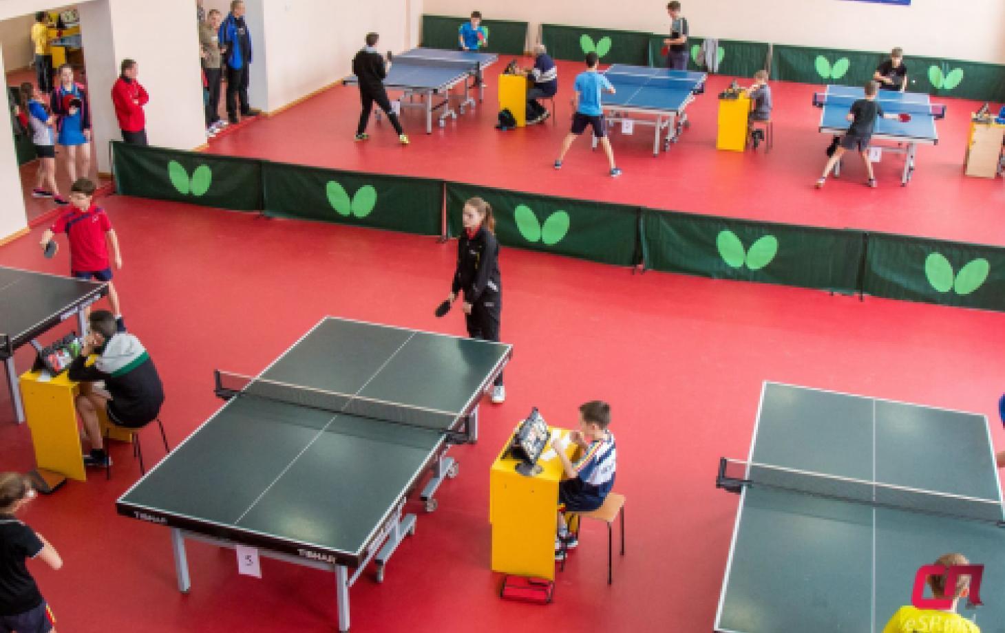 Настольный теннис в Бельцах